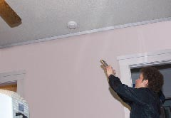 Woman Pointing toward Fire Alarm with remote